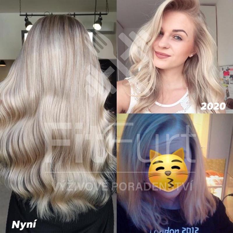 Vlasová kůra